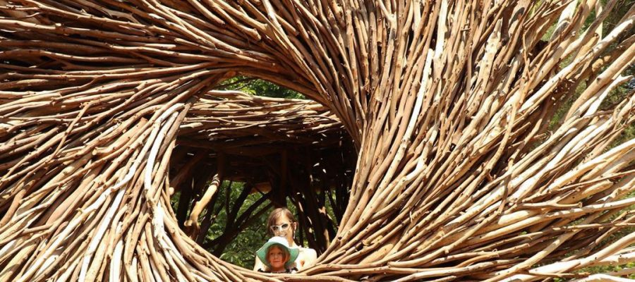 Spirit Nest, Bernheim Arboretum, Bullitt County